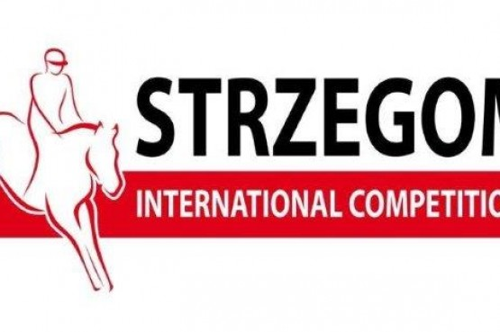 logo sic 2015 małe